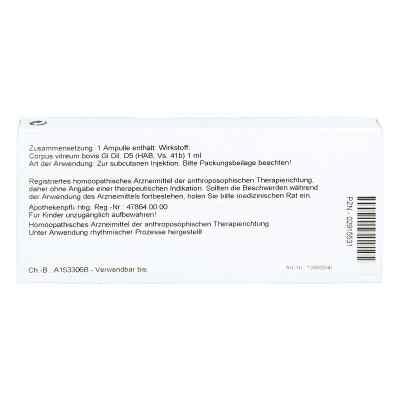 Corpus Vitreum Gl D 5 Ampullen  bei versandapo.de bestellen