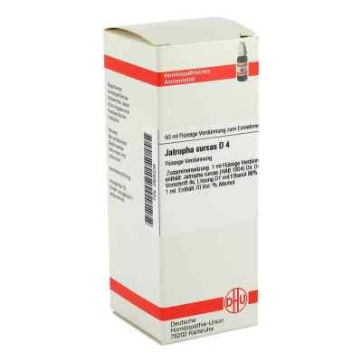 Jatropha Curcas D 4 Dilution  bei versandapo.de bestellen