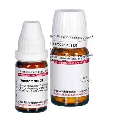 Laurocerasus D 1 Dilution  bei versandapo.de bestellen