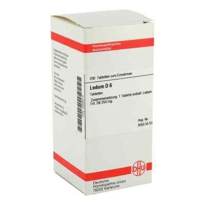 Ledum D 6 Tabletten  bei versandapo.de bestellen