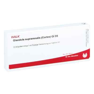 Glandula Supraren. Cort. Gl D 5 Ampullen  bei versandapo.de bestellen