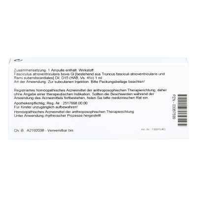 Fasciculus Atrioventr. Gl D 15 Ampullen  bei versandapo.de bestellen