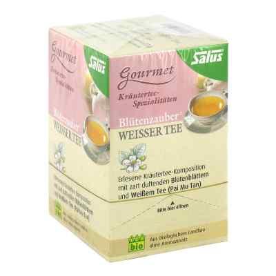 Weisser Tee Blütenzauber Bio Salus Filterbeutel  bei versandapo.de bestellen
