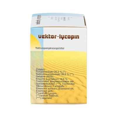 Vektor Lycopin Kapseln  bei versandapo.de bestellen