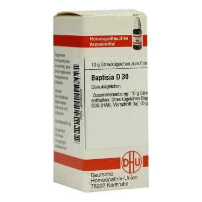 Baptisia D 30 Globuli  bei versandapo.de bestellen