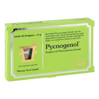 Pycnogenol Kiefernrindenextrakt Dragees  bei versandapo.de bestellen