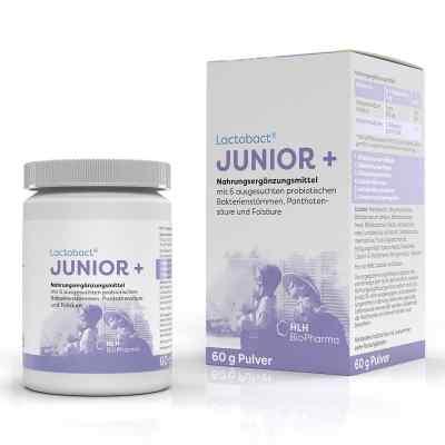Lactobact Junior Pulver  bei versandapo.de bestellen