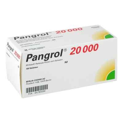 Pangrol 20000  bei versandapo.de bestellen