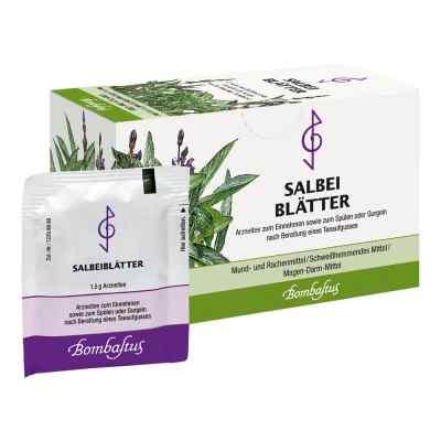 Salbeiblätter Tee Filterbeutel  bei versandapo.de bestellen