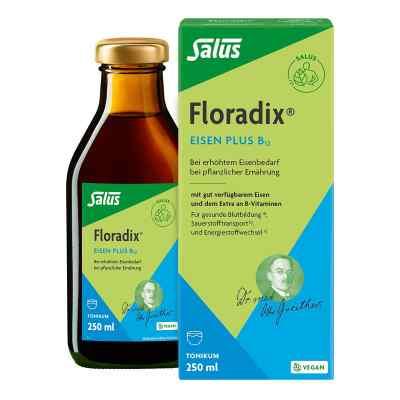 Floradix Eisen plus B12 vegan Tonikum  bei versandapo.de bestellen
