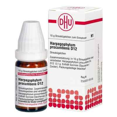 Harpagophytum Proc. D 12 Globuli  bei versandapo.de bestellen