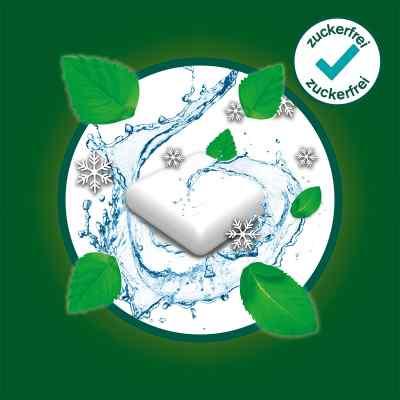 Nicorette 2mg whitemint  bei versandapo.de bestellen