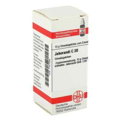 Jaborandi C 30 Globuli  bei versandapo.de bestellen