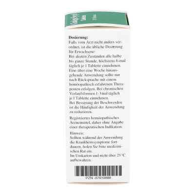 Ginkgo Syxyl Tabletten  bei versandapo.de bestellen