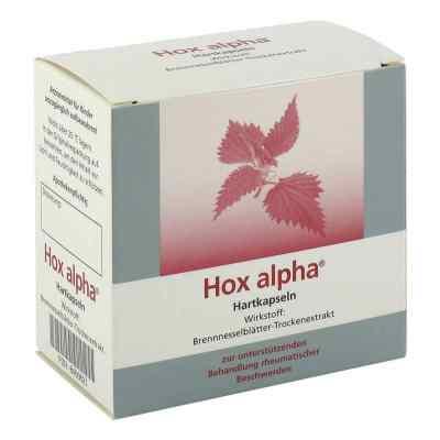 Hox alpha  bei versandapo.de bestellen