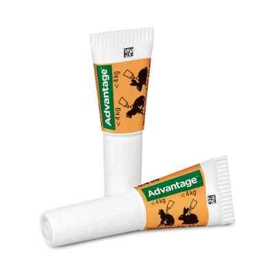 Advantage 40 mg für kl.Katzen und kl.Zierkaninchen  bei versandapo.de bestellen