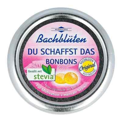 Bachblüten Murnauer Du schaffst das Bonbons  bei versandapo.de bestellen