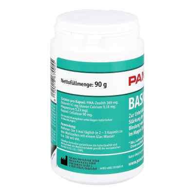 Panaceo Basic-detox Kapseln  bei versandapo.de bestellen