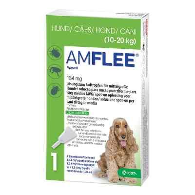 Amflee 134 mg Lösung zur, zum Auftropfen für mittelgr.Hunde  bei versandapo.de bestellen