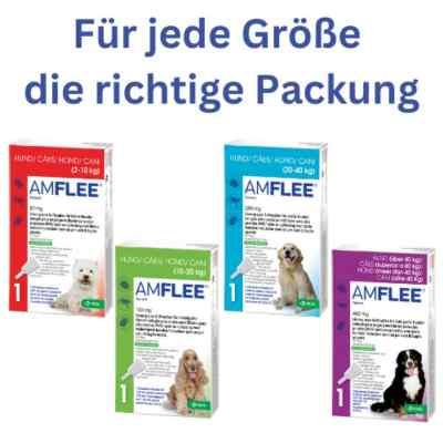 Amflee 268 mg Lösung zur, zum Auftropfen für grosse Hunde  bei versandapo.de bestellen