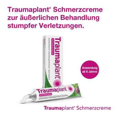 Traumaplant Schmerzcreme  bei versandapo.de bestellen