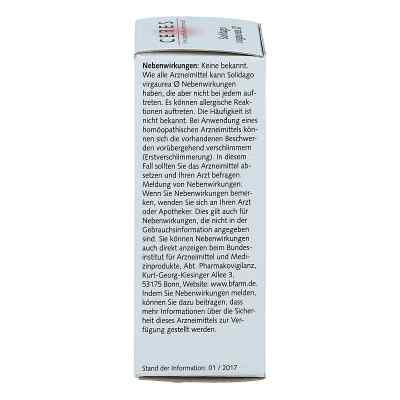 Ceres Solidago virgaurea Urtinktur  bei versandapo.de bestellen