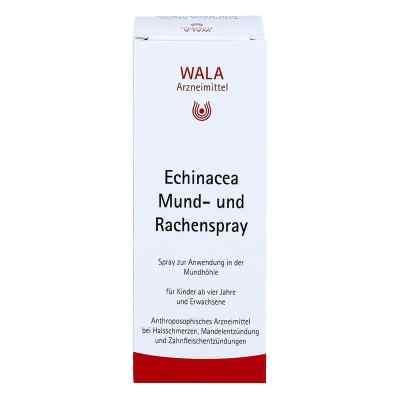 Echinacea Mund- und Rachenspray  bei versandapo.de bestellen