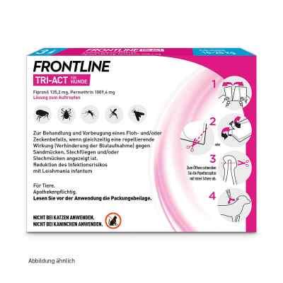 Frontline Tri-Act gegen Zecken, Flöhe bei Hunden (10-20kg)  bei versandapo.de bestellen