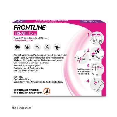 Frontline Tri-Act gegen Zecken, Flöhe bei Hunden (20-40kg)  bei versandapo.de bestellen